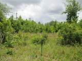 0000 Chipola Heights Road - Photo 2