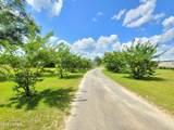 6494 Nada Drive - Photo 5