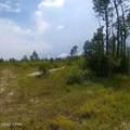 9.3 Acres Webber Road - Photo 1