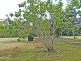 5138 Fort/Hwy 69 Road - Photo 24