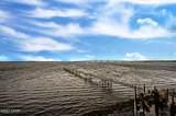 6500 Bridge Water Way - Photo 73