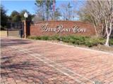 4407 Deer Point Cove Lane - Photo 1