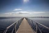 6504 Bridge Water Way - Photo 4