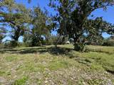 503 Bunkers Cove Road - Photo 5