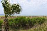 17614 Front Beach Road Road - Photo 48