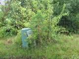3710 Deer Run Road - Photo 7
