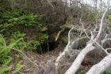 2921 Appalachee Trail - Photo 153