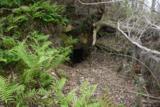 2921 Appalachee Trail - Photo 156
