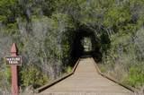 1624 Lost Cove Lane - Photo 3
