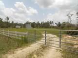 643 County Road 274 Road - Photo 35