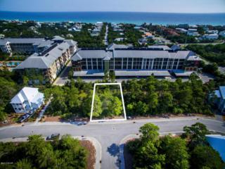 LOT 96 Cabana Trail, Santa Rosa Beach, FL 32459 (MLS #657828) :: Scenic Sotheby's International Realty