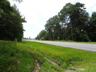 00 Hwy 90, Marianna, FL 32446 (MLS #658046) :: Scenic Sotheby's International Realty