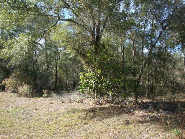 0 Channing, Chipley, FL 32428 (MLS #639761) :: Coast Properties