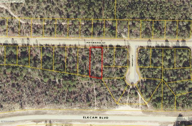 0 Hayward, Chipley, FL 32428 (MLS #639765) :: The Ryan Group