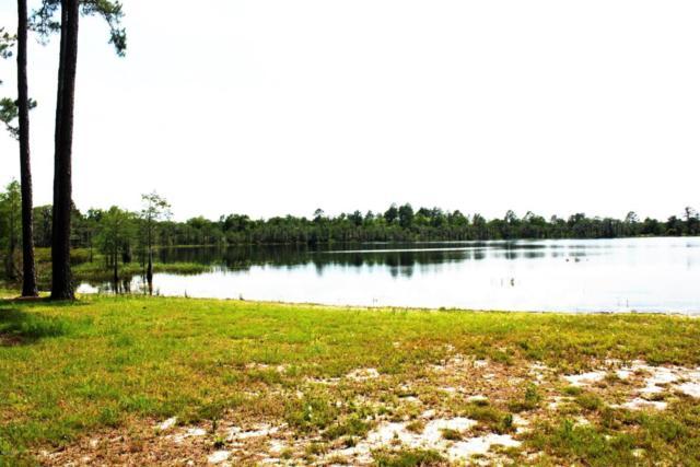 LOT 4 NW County Road 274, Altha, FL 32421 (MLS #647724) :: Coast Properties