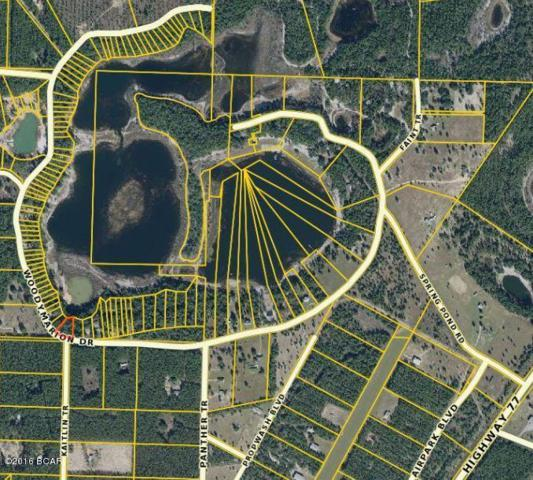 3052 Woodymarion Drive, Chipley, FL 32428 (MLS #649964) :: Keller Williams Success Realty