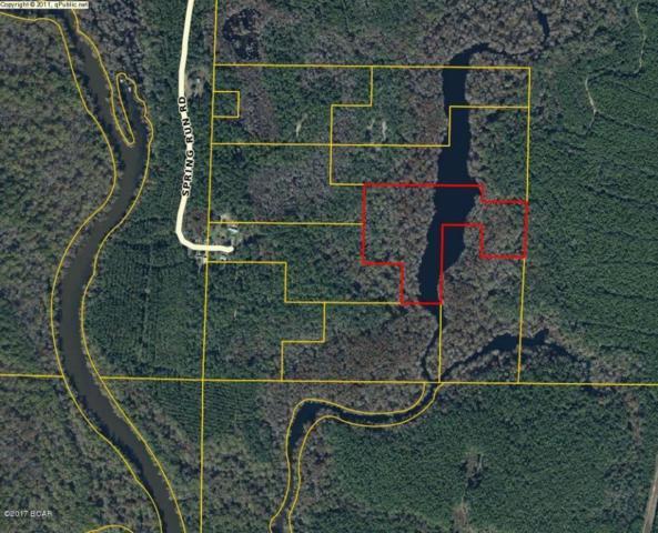 0 Spring Run Road, Vernon, FL 32462 (MLS #654214) :: ResortQuest Real Estate