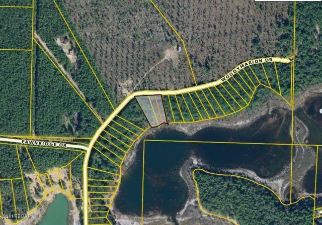 0000 Woodymarion Drive, Chipley, FL 32428 (MLS #656317) :: Keller Williams Success Realty