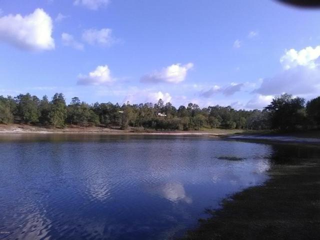 0000 Terzino Lane, Chipley, FL 32428 (MLS #658958) :: Coast Properties