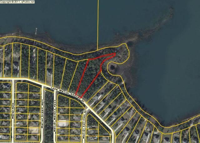 141 Lake Merial Shores Drive, Southport, FL 32409 (MLS #661233) :: Coast Properties