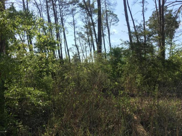 0000 Woodymarion Drive, Chipley, FL 32428 (MLS #661678) :: Coast Properties