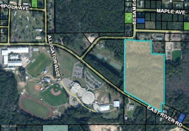 0000 E River Road, Wewahitchka, FL 32465 (MLS #662609) :: Coast Properties