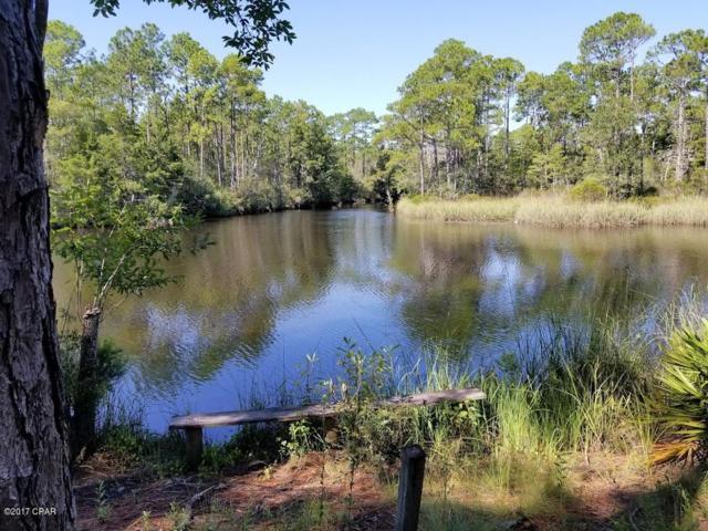 295 Fork Drive, Wewahitchka, FL 32465 (MLS #663622) :: The Ryan Group