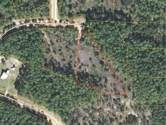 0 Gifford Circle, Alford, FL 32420 (MLS #663900) :: Coast Properties