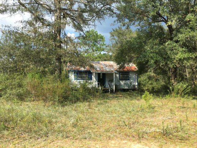 487 W Creekview, Wewahitchka, FL 32465 (MLS #664008) :: Keller Williams Emerald Coast