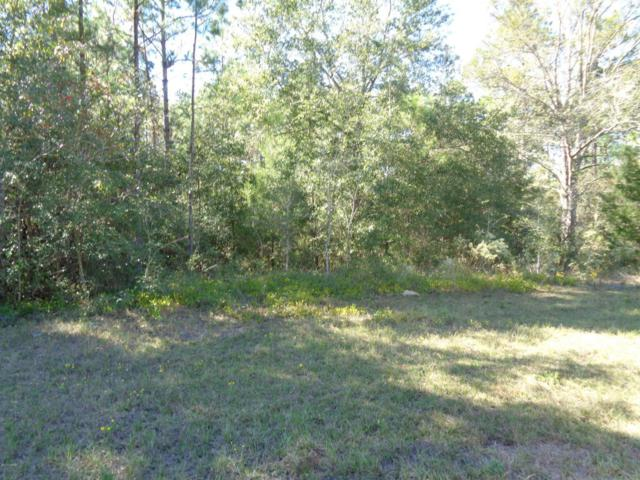 LOT 2 Fairview Road, Alford, FL 32420 (MLS #664293) :: Scenic Sotheby's International Realty