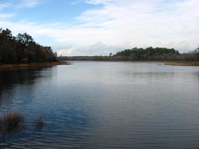 LOT 20 Paradise Lakes Road, Chipley, FL 32428 (MLS #664685) :: Coast Properties