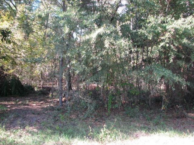 000 Magnolia Blossom Lane, Marianna, FL 32446 (MLS #664939) :: Coast Properties