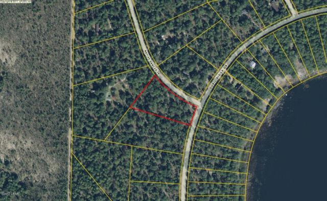 00 Native Dancer Trail, Chipley, FL 32428 (MLS #665813) :: Scenic Sotheby's International Realty