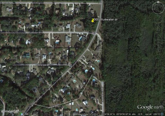000 Bluewater Drive, Panama City, FL 32404 (MLS #665844) :: Scenic Sotheby's International Realty