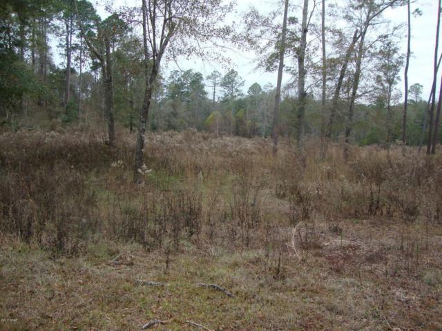 0 Brook Drive, Bonifay, FL 32425 (MLS #666002) :: Counts Real Estate Group