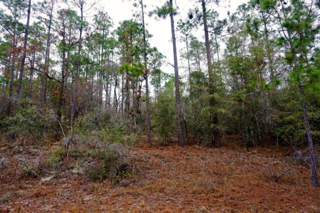 00 View Drive, Alford, FL 32420 (MLS #666126) :: Coast Properties