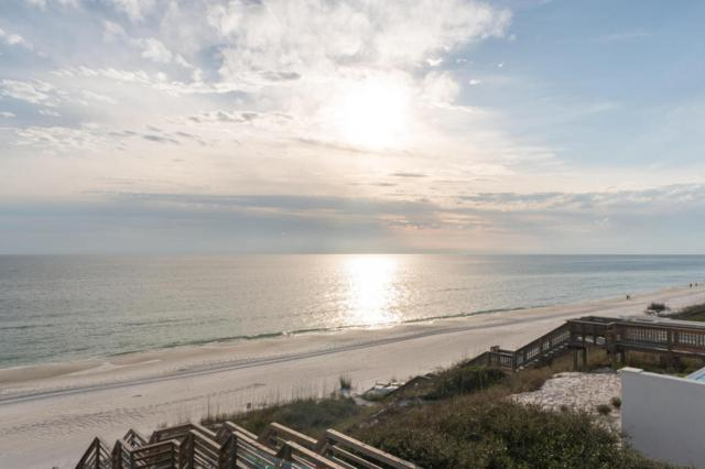 223 Paradise By The Sea Boulevard, Inlet Beach, FL 32461 (MLS #666595) :: Keller Williams Success Realty