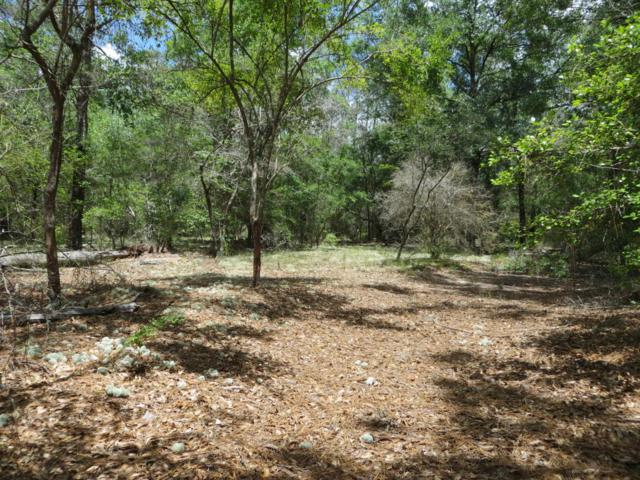 PID -0153 Cardinal Place, Chipley, FL 32428 (MLS #667333) :: Scenic Sotheby's International Realty