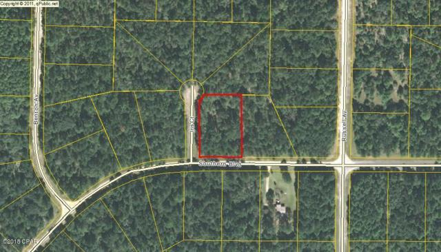 XXX Southern Boulevard, Alford, FL 32420 (MLS #667434) :: Scenic Sotheby's International Realty