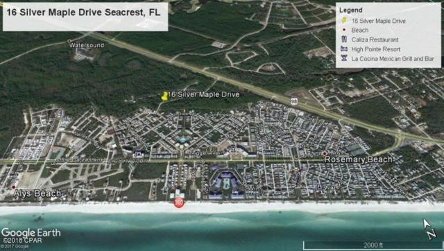 LOT 16 Silver Maple Drive, Seacrest, FL 32461 (MLS #667448) :: Keller Williams Realty Emerald Coast