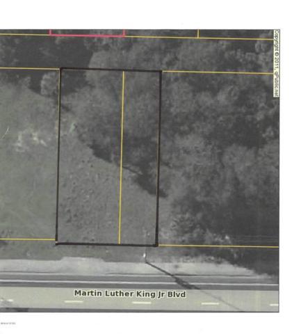 1215 Mlk, Panama City, FL 32401 (MLS #667959) :: Counts Real Estate Group