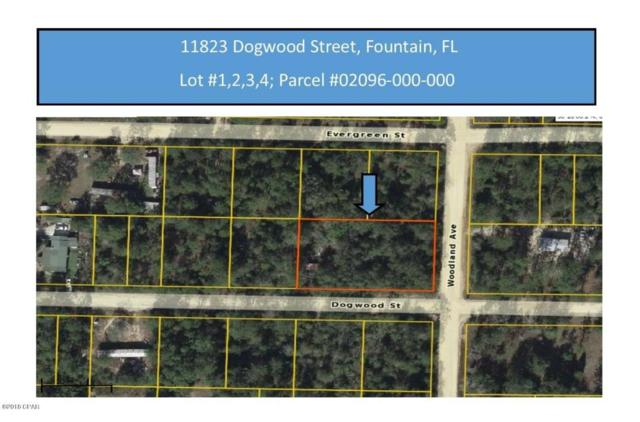 11823 Dogwood Street Lots 1-4, Fountain, FL 32438 (MLS #669209) :: Keller Williams Realty Emerald Coast