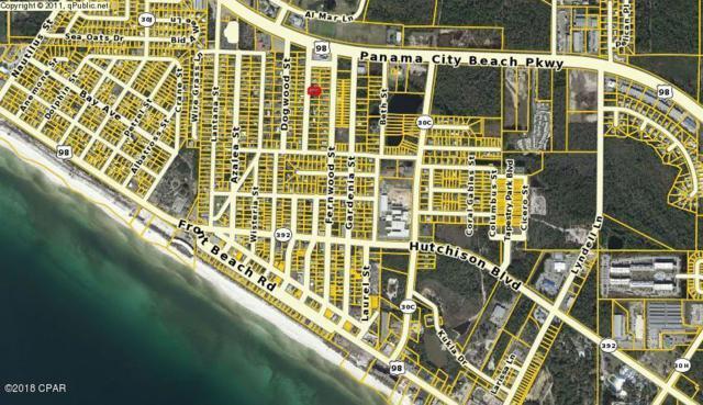 107 Evergreen Street, Panama City Beach, FL 32407 (MLS #669709) :: Keller Williams Realty Emerald Coast