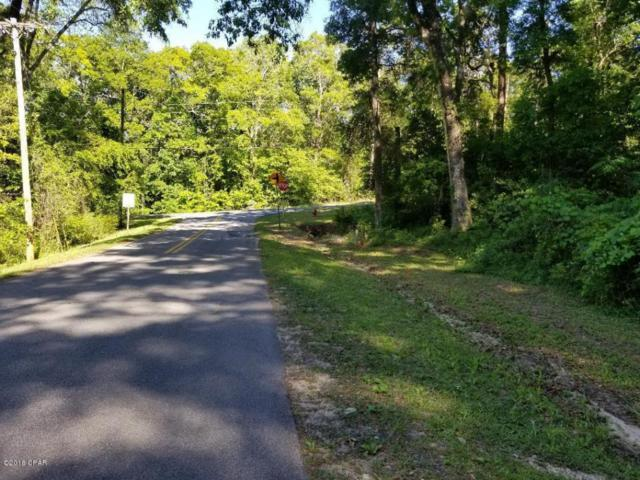 000 N Caverns Road, Marianna, FL 32446 (MLS #670732) :: Scenic Sotheby's International Realty