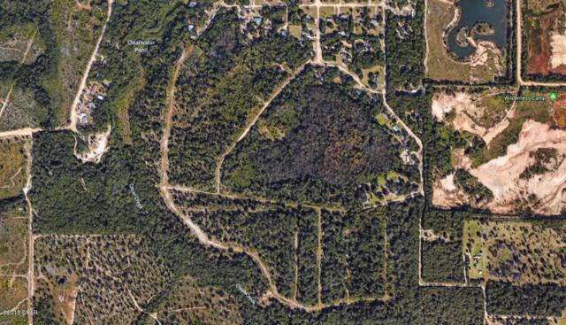 0000 Hornbill Drive, Youngstown, FL 32466 (MLS #671028) :: Coast Properties