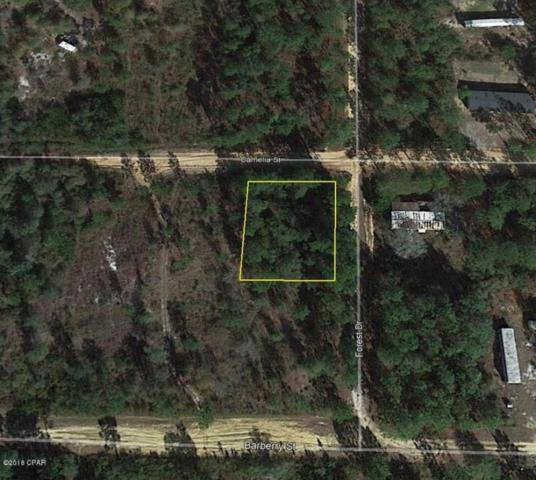 00 Forest Drive, Fountain, FL 32438 (MLS #671849) :: Keller Williams Realty Emerald Coast