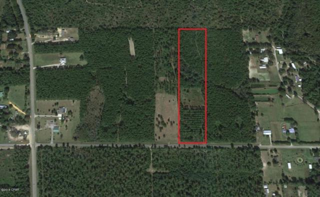 000 Madison Park Drive, Wewahitchka, FL 32465 (MLS #672139) :: Coast Properties