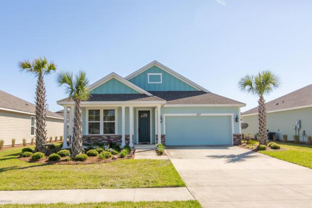 317 Blue Sage Road, Panama City Beach, FL 32413 (MLS #672246) :: Scenic Sotheby's International Realty