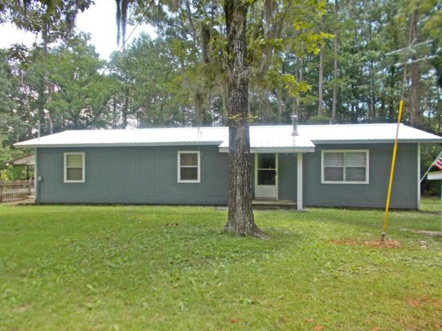 4118 Little Dothan Road, Sneads, FL 32460 (MLS #673008) :: Counts Real Estate Group