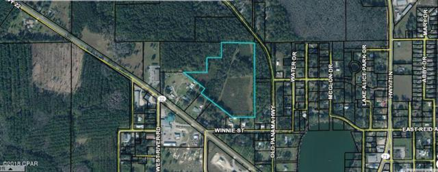 000 Old Panama Highway, Wewahitchka, FL 32465 (MLS #673023) :: ResortQuest Real Estate